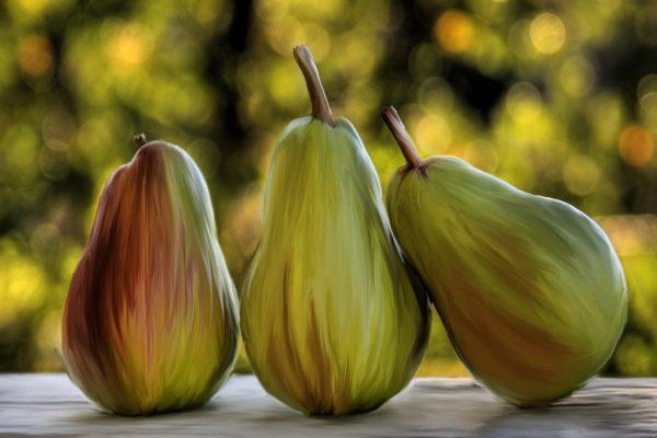 Photo Art – Pear Buddies